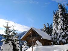 Almhütte Weber Österreich - Skihütten