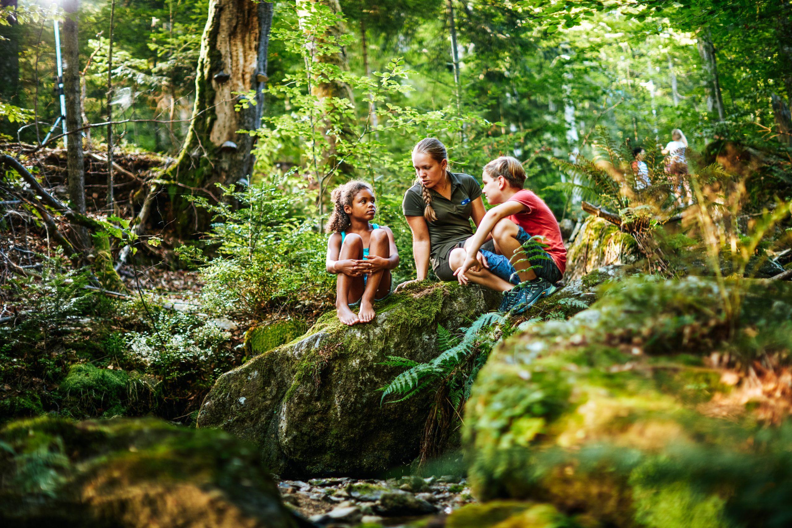 Bayrischer Wald, Bayern