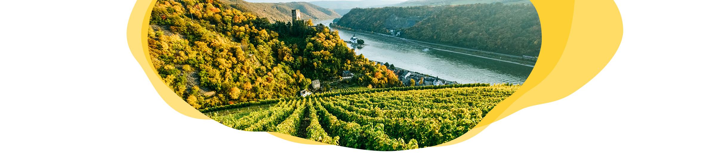 Digitale Reise Rheinland-Pfalz Header
