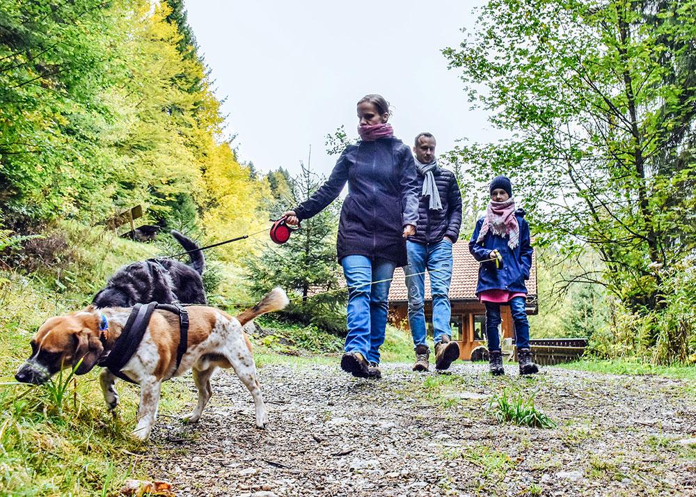 Familie mit Hunden - Wanderurlaub mit Hund