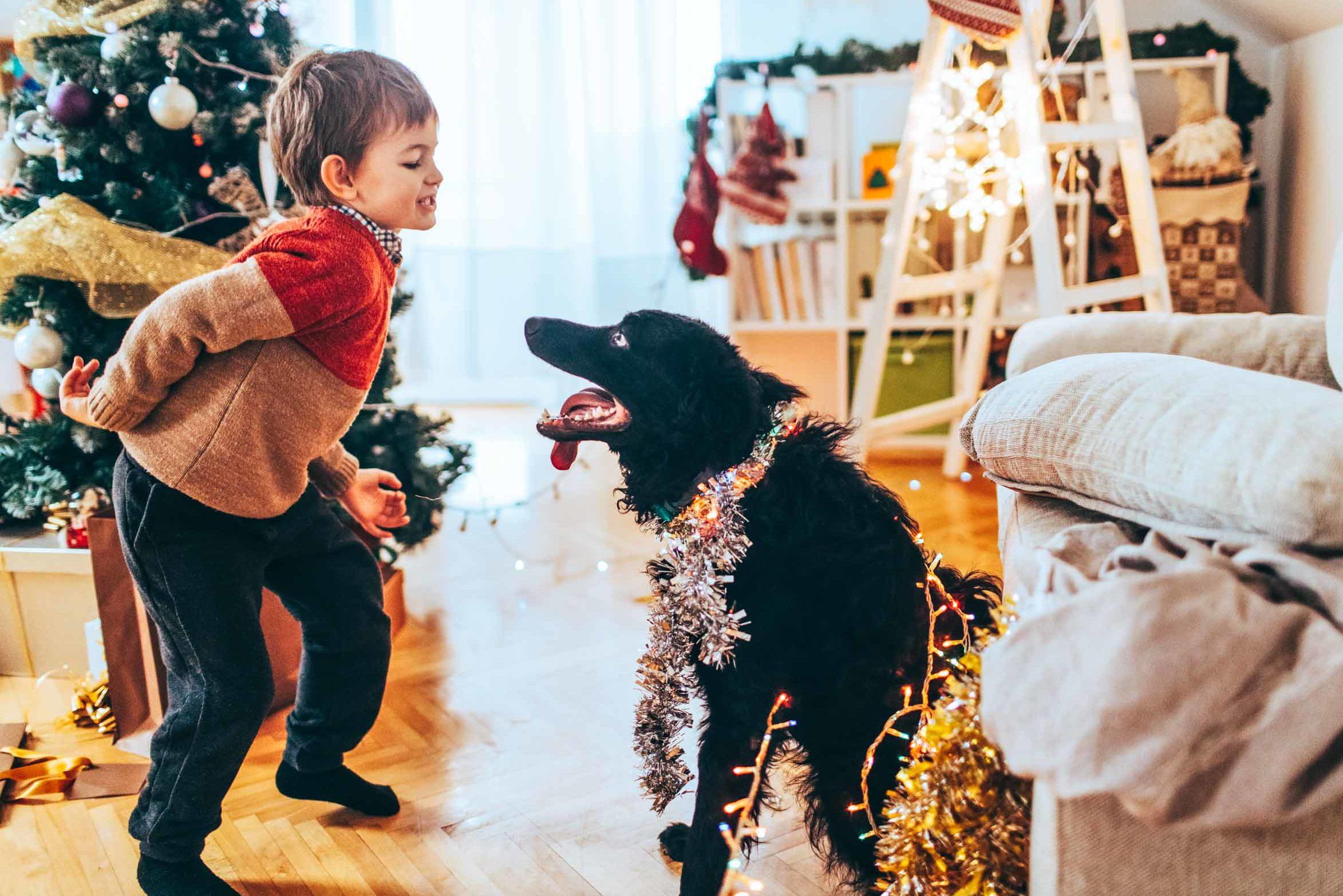 Silvester mit Kind - Silvesterreise