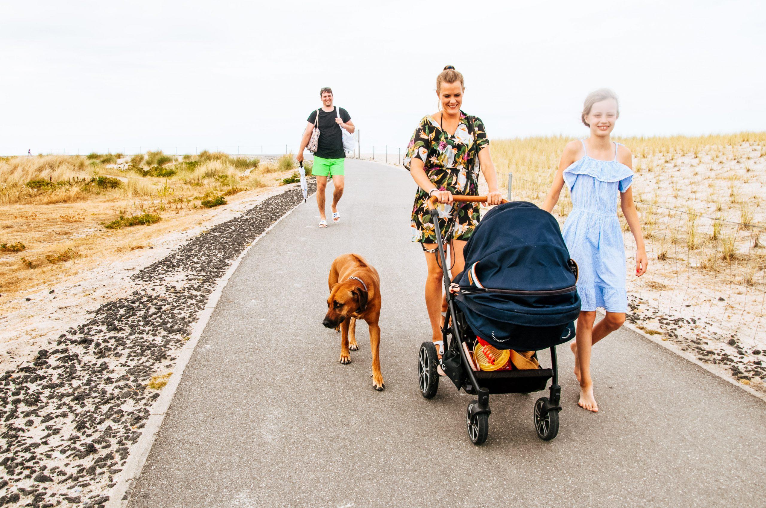 Spaziergang mit Hund auf Sylt - Nordsee mit Hund