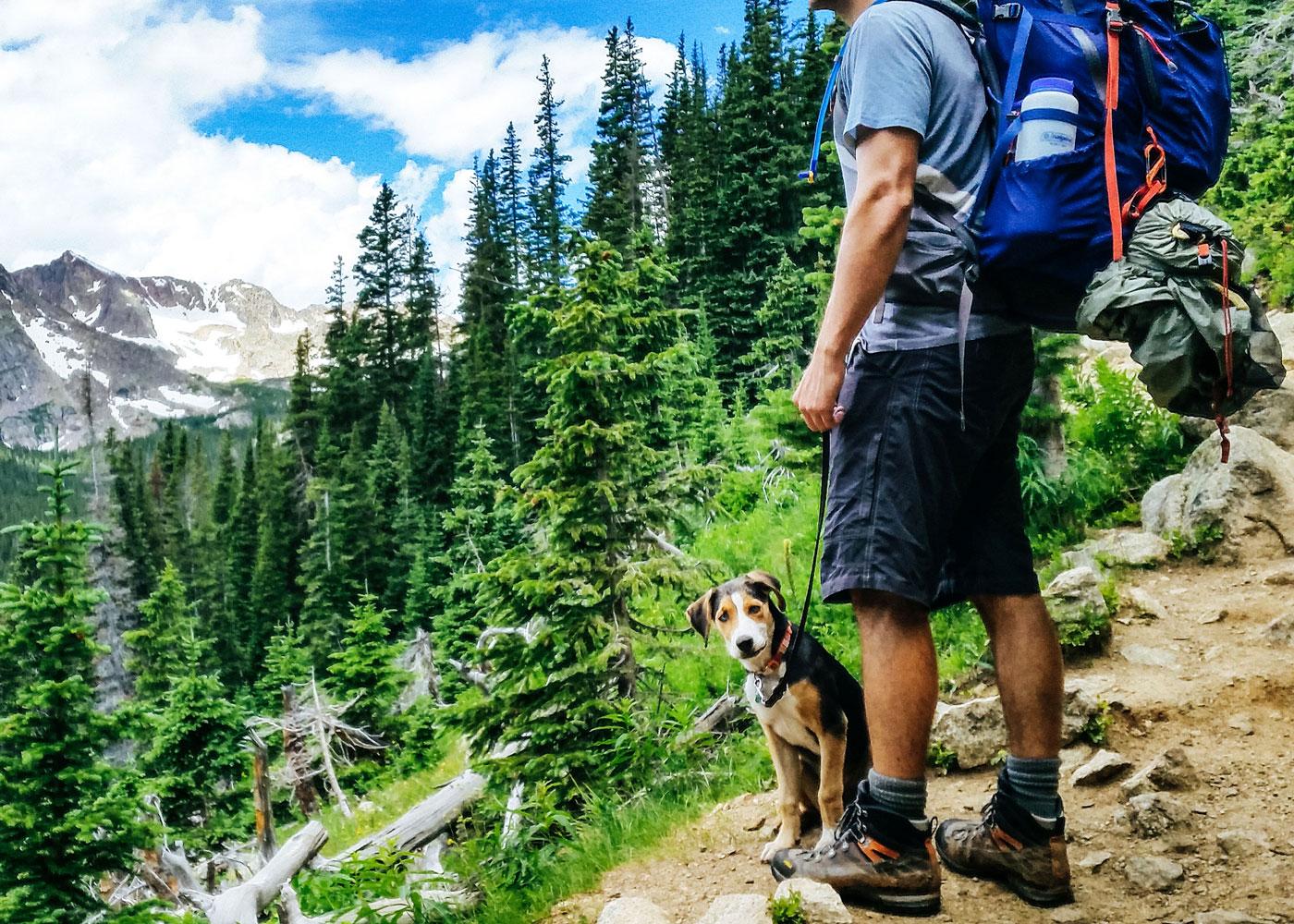 Herrchen mit Hund beim Wandern - Wanderurlaub mit Hund