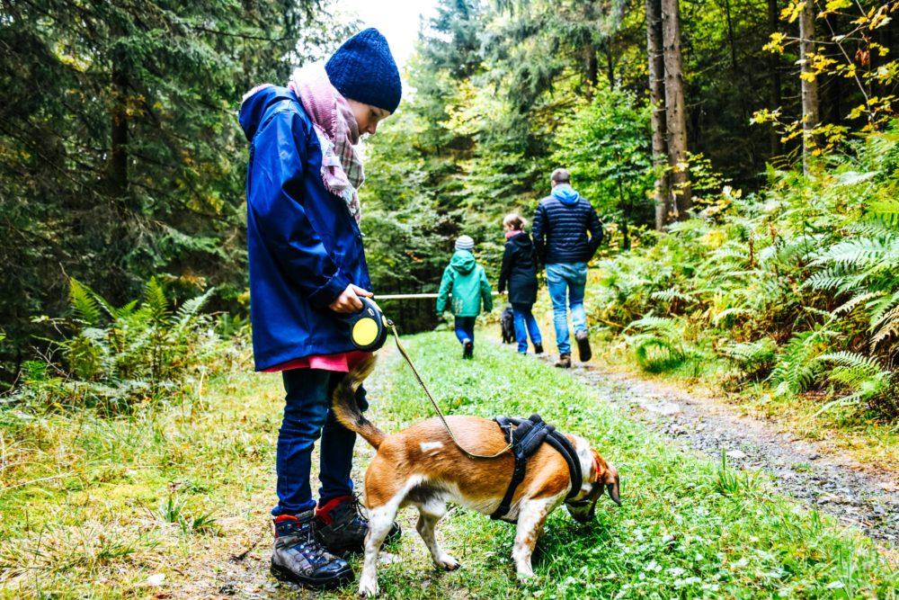 Familie beim Wandern mit Hund - Aktivurlaub im Schwarzwald