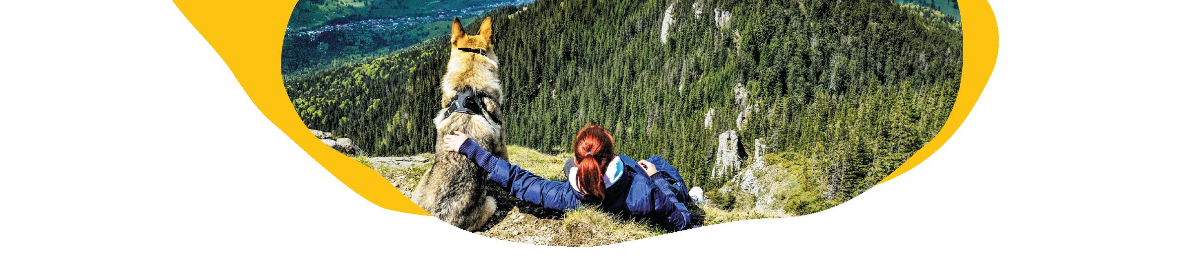 Wanderurlaub mit Hund Header