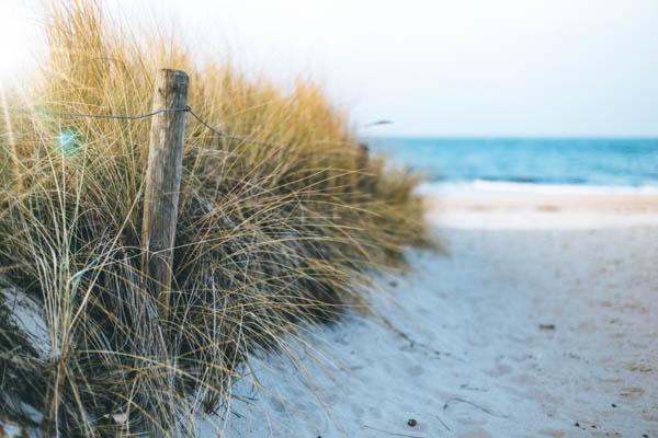 Strand mit Gras in Kühlungsborn