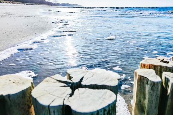 Strand mit Baumstämmen in Kühlungsborn