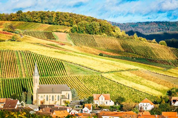 Weinberge mit Ortschaft im Vordergrund im Herbst