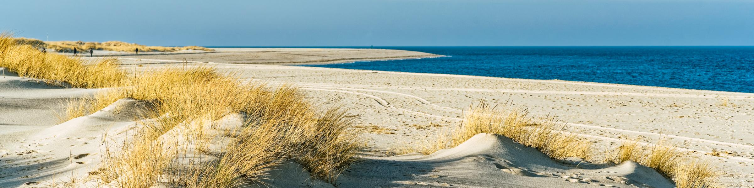 Sanddünen auf Sylt