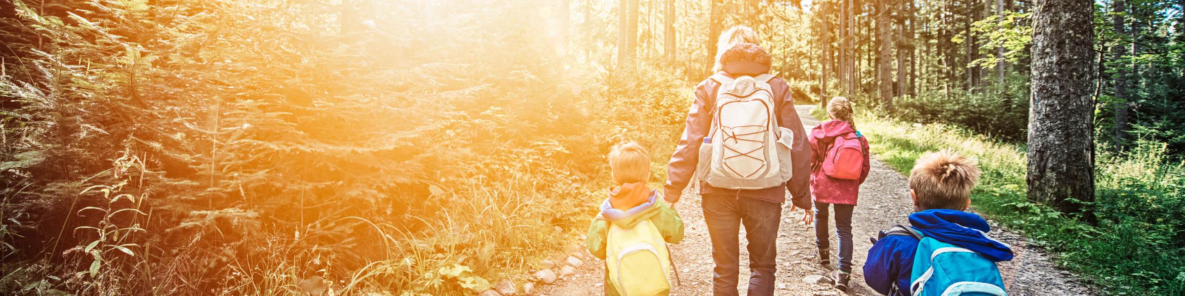 Mutter mit drei Kindern wandert im Wald