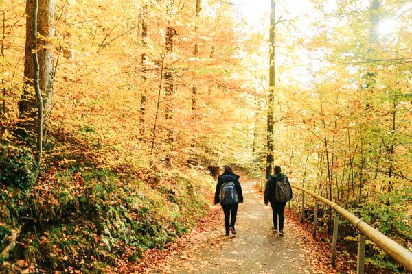 Wandern in herbstlicher Landschaft im Allgäu