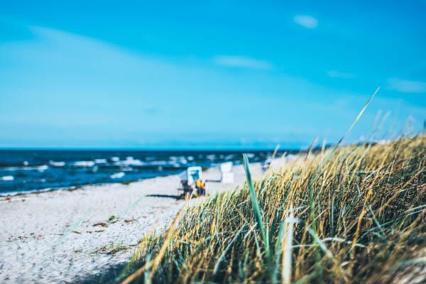 Strand mit Strandkörben auf Hiddensee