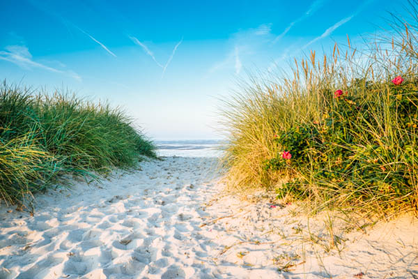 Strand und Wattenmeer an der Nordsee