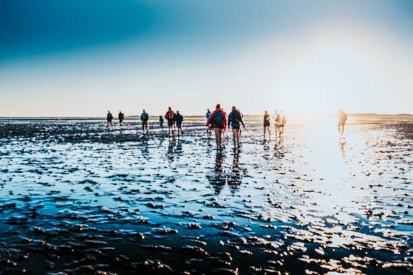 Wattwanderung im Wattenmeer – Reiseführer Nordsee