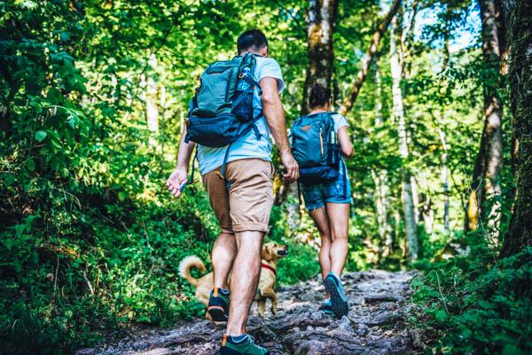 Junges Paar mit einem Hund beim Wanderurlaub mit Hund im Wald