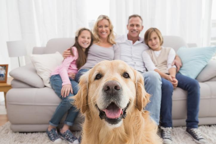 Ferienwohnung familienfreundlich einrichten